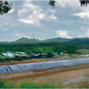 Reabilitação de áreas contaminadas